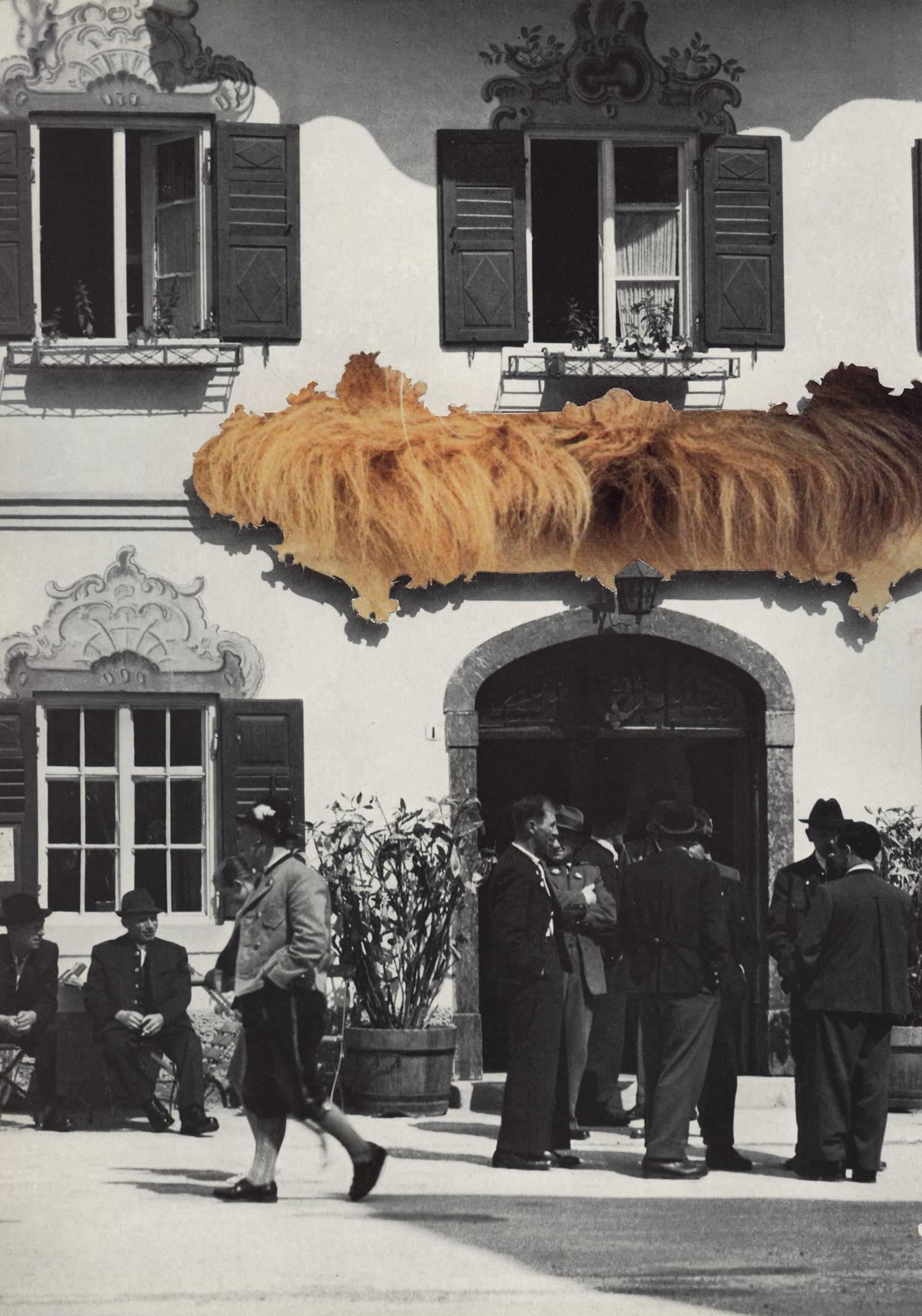 Rapunzel  2009, 27,5 x 19 cm, Collage