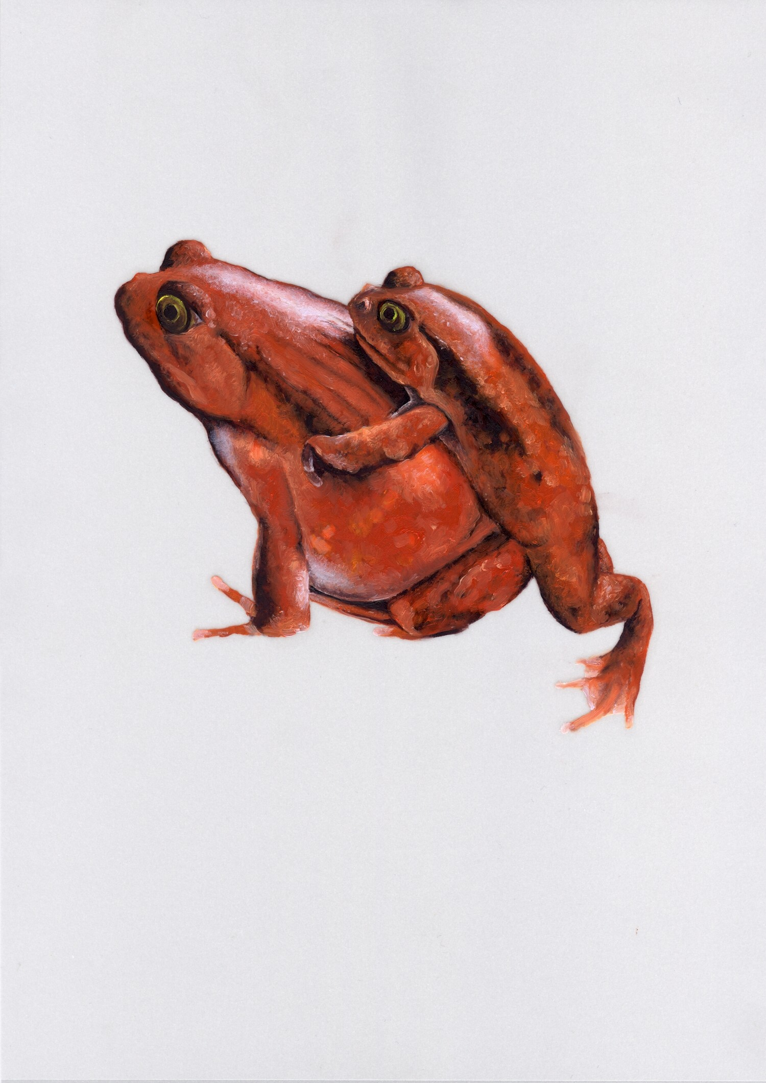 Vellum 05#2011, 29,7 x 21 cm, Öl auf Transparentpapier