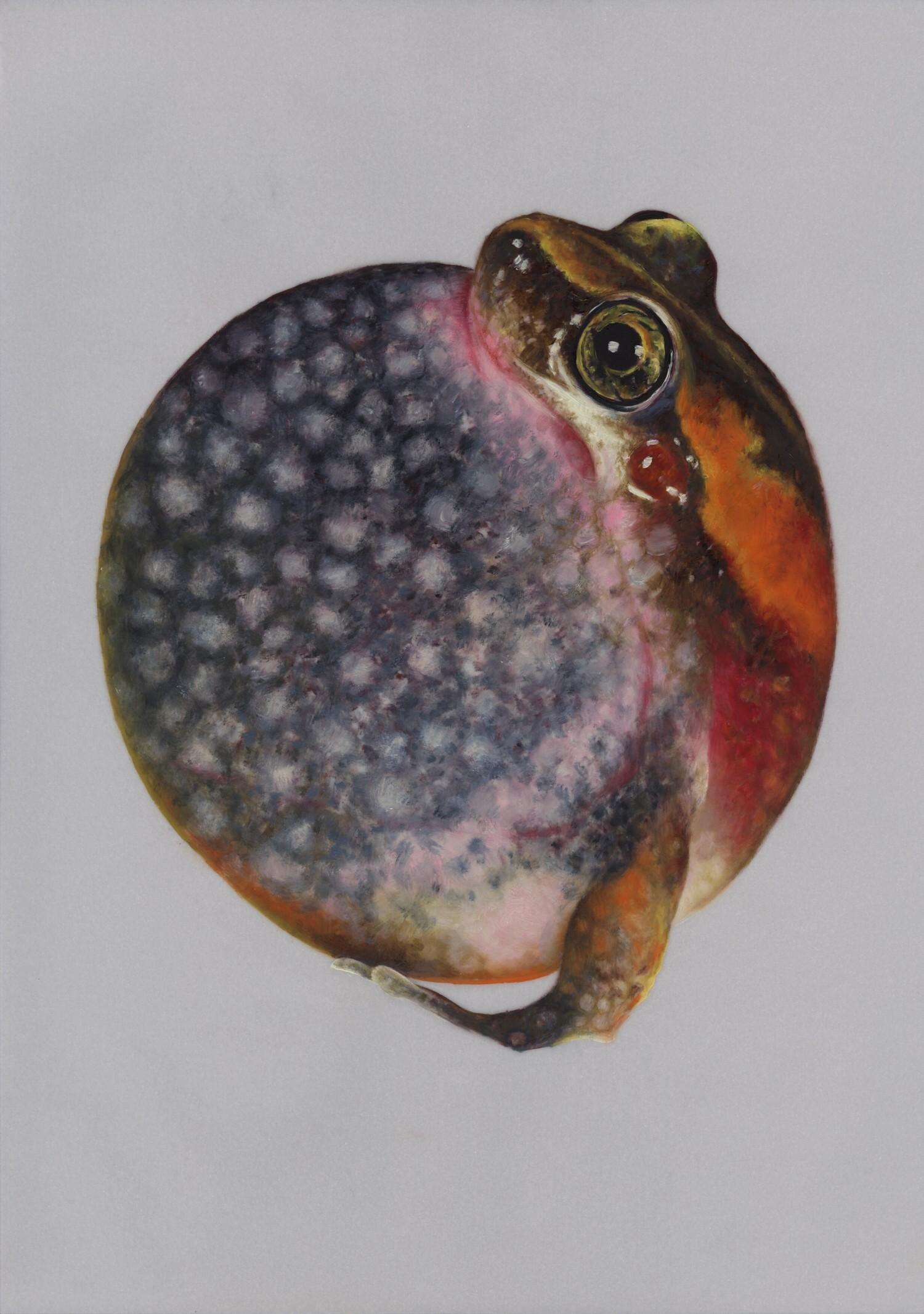Vellum 10#2013, 29,7 x 21 cm, Öl auf Transparentpapier